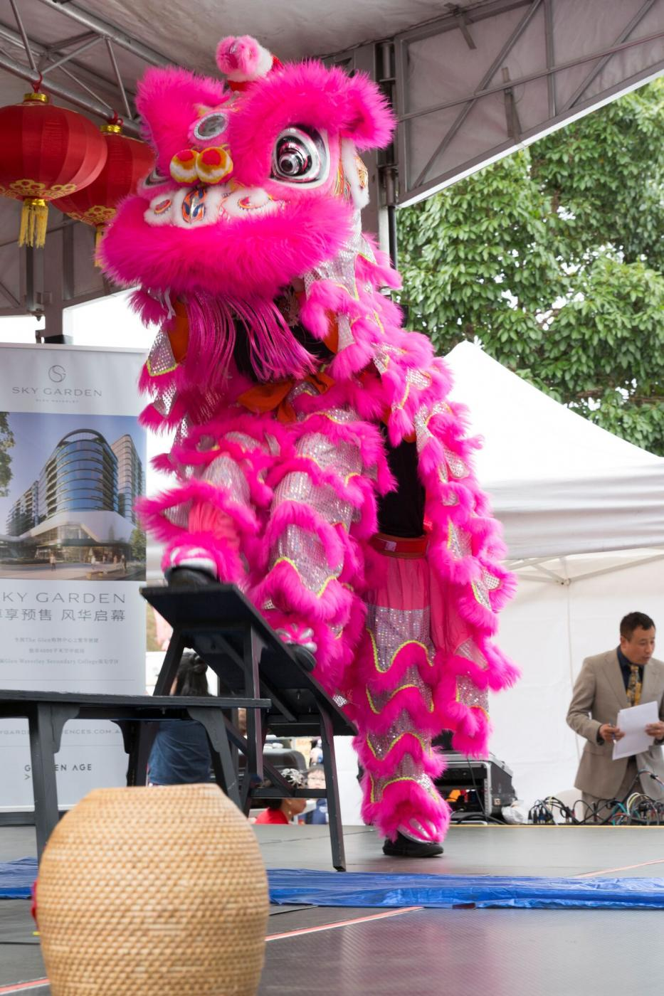 Glen Waverley Chinese New Year and Lantern Festival - Stage Performance<br>Traditional Lion Dance performance by Hong De Lion and Dragon dance Association